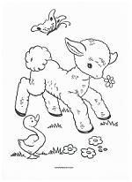 lamb coloring page